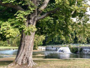 Cascata Chantilly Grand Canal