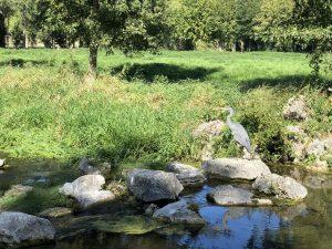 Chantilly giardini